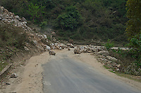 Trongsa to Thimphu, Bhutan..Also along the road Rock slide,
