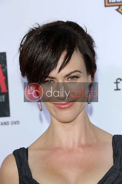Maggie Siff<br />
