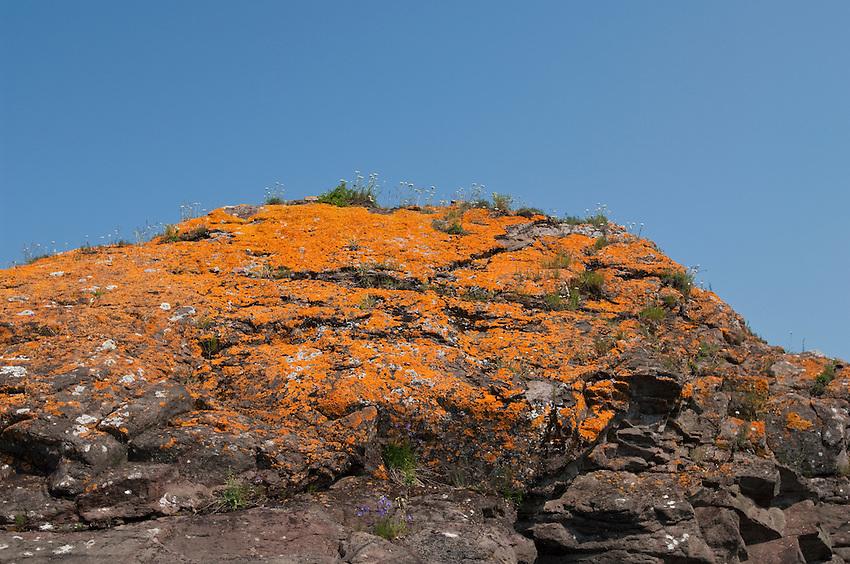 Orange lichens cling to the Lake Superior shoreline of Isle Royale National Park.