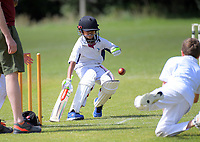 Action from the Cricket Wellington junior cricket match between Eastern Suburbs Moreporks and the Brooklyn Turbines at MacAlister Park in Wellington, New Zealand on Saturday, 8 December 2018. Photo: Dave Lintott / lintottphoto.co.nz