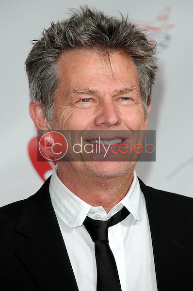 David Foster<br />at the 2009 Musicares Person of the Year Gala. Los Angeles Convention Center, Los Angeles, CA. 02-06-09<br />Dave Edwards/DailyCeleb.com 818-249-4998
