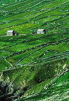 Farm houses and field stone walls, County Kerry, Ireland