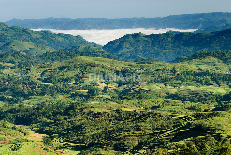 View from Ruteng towards Liang Bua cave, discovery site of Homo floresiensis, or the Flores hobbit.