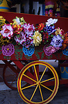 Old Town historic park close-up of flower cart, bright, colorful, Bazaar del Mundo, San diego, California USA