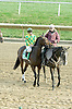 Edgewater before The Brandywine Stakes at Delaware Park on 10/30/10