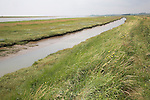 River Ore behind Orford Ness looking downstream, Suffolk, England