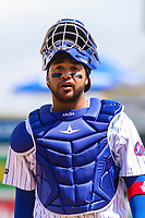 Iowa Cubs catcher Francisco Arcia (16) during a Pacific Coast League game against the San Antonio Missions on May 2, 2019 at Principal Park in Des Moines, Iowa. Iowa defeated San Antonio 8-6. (Brad Krause/Four Seam Images)