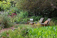 Lounge chairs under shady oak trees in back yard by pond and bog in California native plant garden, Schino