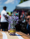2017 Lavender and Honey Festival