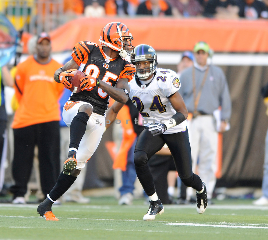 CHAD OCHOCINCO, of the Cincinnati Bengals, in action during the Bengals game against the Baltimore Ravens on November 8, 2009 in Cincinnati, OH. Bengals won 17-7.