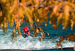 Fall colors and kayaker at the Reno whitewater park