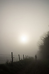 Footpath with wooden fence on a misty morning in Hampshire in England