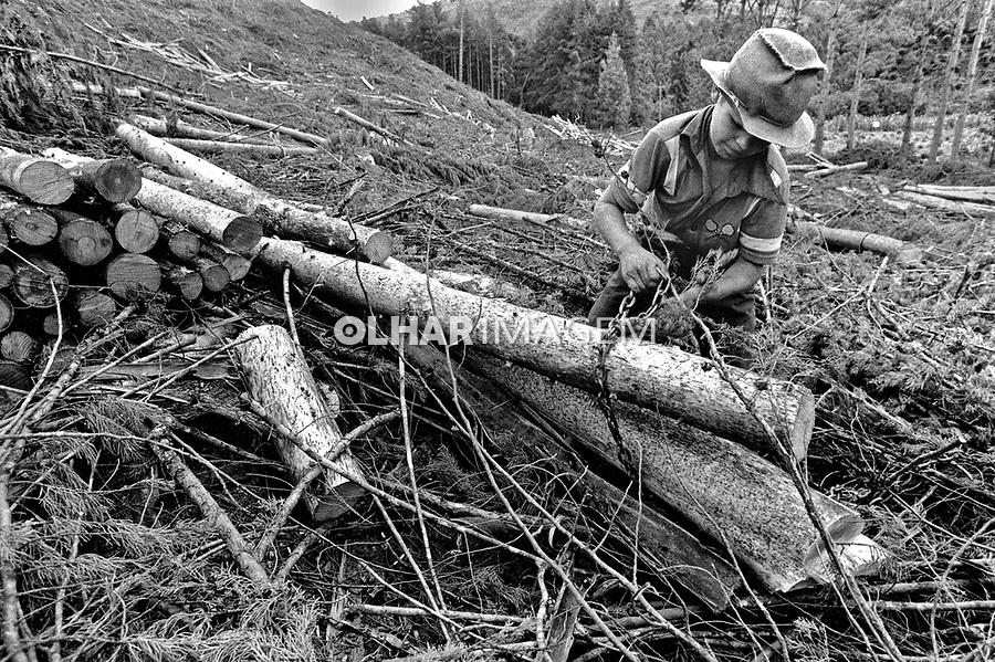 Crinaça trabalhando em corte de madeira, Minas Gerais. 1985. Foto de Juca Martins.