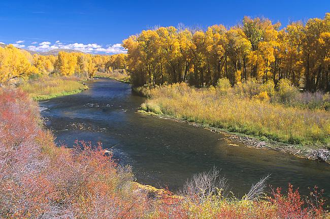 Autumn, Gunnison River, Curecanti National Recreation Area, Colorado