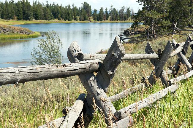Henry Fork at Harriman State Park