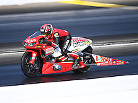 May 14, 2016; Commerce, GA, USA; NHRA pro stock motorcycle rider Hector Arana Jr during qualifying for the Southern Nationals at Atlanta Dragway. Mandatory Credit: Mark J. Rebilas-USA TODAY Sports