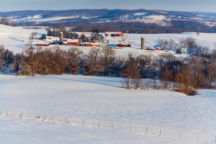 Winter morning light on a farm scene near Elizabeth; Jo Daviess County, IL