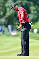 Bethesda, MD - July 1, 2018: Tiger Woods hits a Birdie on the 7th hole during final round of professional play at the Quicken Loans National Tournament at TPC Potomac at Avenel Farm in Bethesda, MD.  (Photo by Phillip Peters/Media Images International)