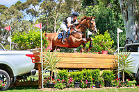 AUS-Christine Bates rides Adelaide Hill during the CIC3* Cross Country. Interim-3rd. 2017 AUS-Mitsubishi Motors Australian International 3 Day Event. Victoria Park, Adelaide. Saturday 18 November. Copyright Photo: Libby Law Photography