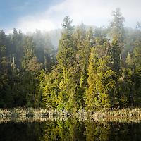 Morning fog in native forest at Lake Matheson, Westland Tai Poutini National Park, UNESCO World Heritage Area, West Coast, New Zealand, NZ