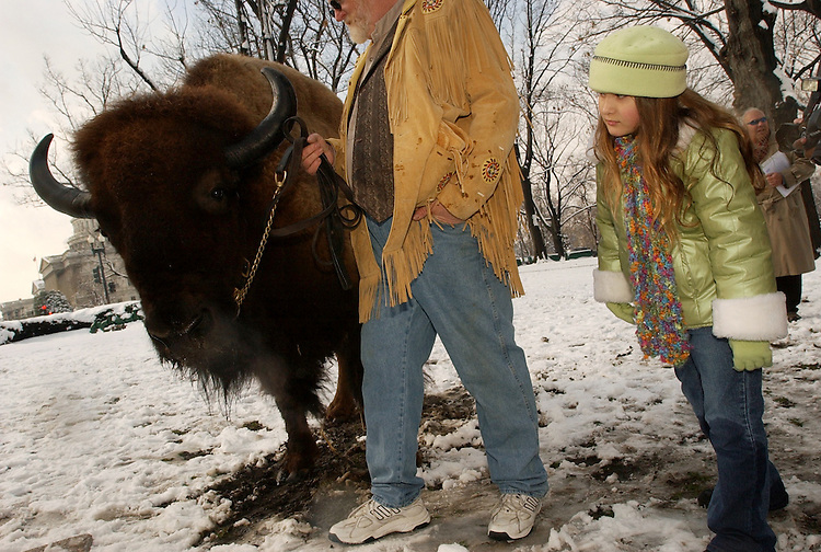 Annalee Gabler, 7, of Fallston, Md., checks out Cody the buffalo who was on hand for the ceremony to unveil the new American Bison Nickels, Tuesday, in Upper Senate Park.  The nickel went into circulation Feb. 28, 2005 and marks the first time the image of Thomas Jefferson has ever been changed.  Cody is handled by Mike Fogel on Minnesota.
