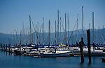 Idaho, North. Lake Pend Oreille, Bayview. Sailboats docked in the sailboat marina on Scenic Bay.