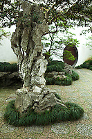 The Master of the Nets Garden is among the finest gardens in Suzhou. It is recognized with other classical Suzhou gardens as a UNESCO World Heritage Site. The garden demonstrates Chinese garden designers' skills for blending art, nature and architecture to create unique masterpieces. The Master of the Nets is regarded among garden connoisseurs for its mastering the techniques of relative dimension, contrast, sequence and depth. The eastern part consists of residential quarters while the gardens are located in the western part. Plants and rocks are used to create views which represent several seasons. It also includes three side courts to the east and south. The two dominant elements of the composition are the Barrier of Cloud grotto, a cypress tree dating from the Ming Dynasty, and a pine tree several centuries old. The areas to the south of the Rosy Cloud Pool were used for social activities and the areas to the north were used for intellectual activities. The buildings are laid out in a style called close to the water which is used to give the Rosy Clouds Pool the illusion of great size. Small buildings are set on rocks or piers directly over the water surface while large buildings are separated from the pool planted with trees to obscure their size.