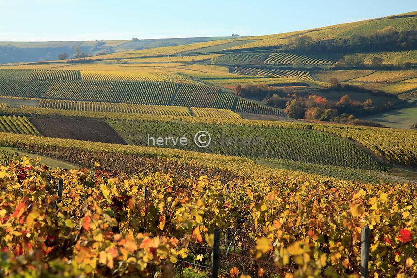 France, Berry, Cher (18), Sancerrois, Sancerre, le vignoble en automne après les vendanges // France, Berry, Cher , Sancerrois, Sancerre, the vineyards in autumn