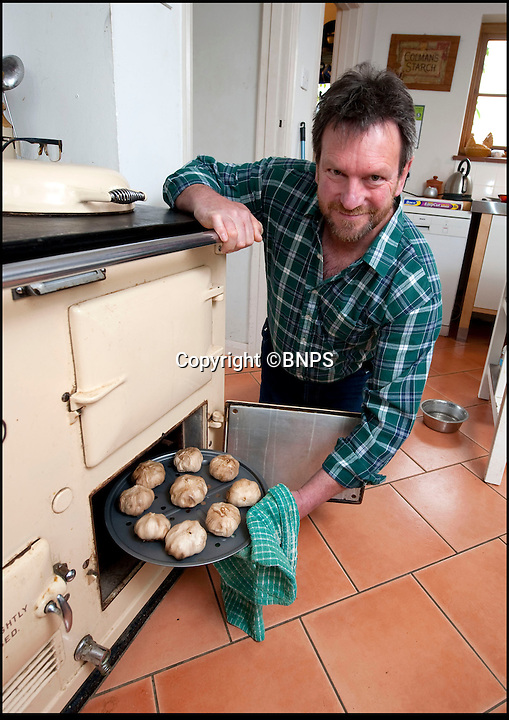 Bmth News &amp; Pictures 01202 558833<br /> Pic: PhilYeomans/BNPS<br /> <br /> Black gold...Mark started experimenting with his kitchen Aga.<br /> <br /> A British farmer has launched this year's must-have food product after stumbling across a 4,000-year-old Korean recipe on the internet.<br /> <br /> And now the Dorset farmer is hoping to become Britain's first Garlic Millionaire as top chefs inundate him with orders for the unique product.<br /> <br /> His top secret recipe includes slow cooking the pungent bulbs for 40 days to change their colour, texture and taste.<br /> <br /> Mark Botwright wanted to find a way of preserving some of the 900,000 bulbs of garlic grown on his farm so they could be eaten all year round.<br /> <br /> The answer came when he chanced upon an ancient Korean recipe for 'black garlic', a way of preserving garlic bulbs using exposing them to heat and moisture for more than a month.<br /> <br /> Mark spent 18 months perfecting the recipe to transform regular garlic bulbs into sweety, sticky black garlic, said to have the texture of dried apricots and the taste of balsamic vinegar.<br /> <br /> He even built his own special heating room at his 13-acre farm in Bridport, Dorset, so that he could ramp up production to 2,500 bulbs every 40 days.<br /> <br /> The product has been such a hit he now supplies it to some of the best restaurants in the country including The Ritz and The Ivy.<br /> <br /> And it has been given the thumbs up by a host of top chefs including Nigella Lawson, Mark Hix and Yottam Ottelenghi.<br /> <br /> One bulb of black garlic costs 3.50 pounds and has a shelf life of over a year.