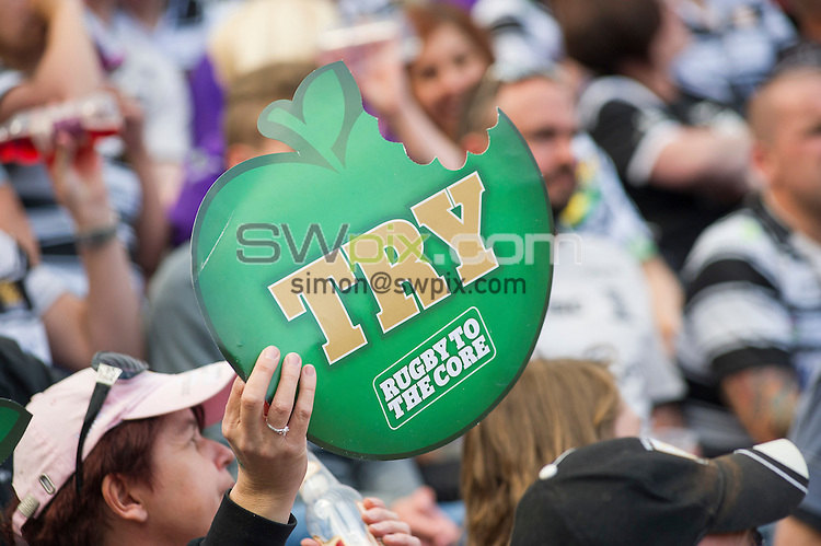 Picture by Allan McKenzie/SWpix.com - 30/05/2015 - Rugby League - First Utility Super League - Magic Weekend - The Brief - St. James's Park, Newcastle, England - Fans, supporters, Kingstone Press, branding.