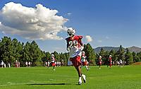 Jul 31, 2009; Flagstaff, AZ, USA; Arizona Cardinals cornerback (29) Dominique Rodgers-Cromartie during training camp on the campus of Northern Arizona University. Mandatory Credit: Mark J. Rebilas-