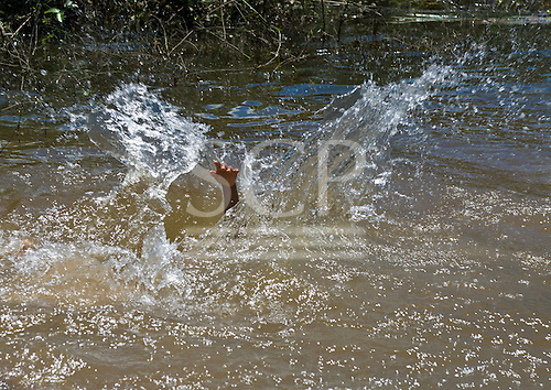 Xingu Indigenous Park, Mato Grosso State, Brazil. A child swimming in the river, Aldeia Yawalapiti.