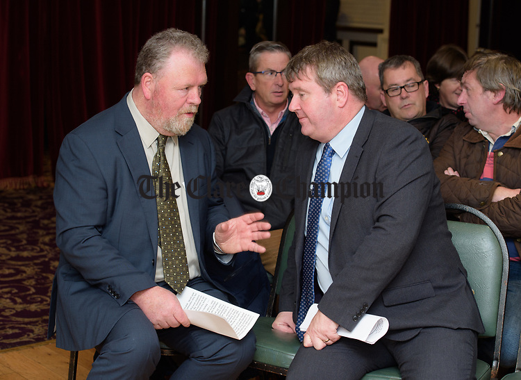 at the Clare Fine Gael selection convention in the Auburn Lodge hotel, Enis. Photograph by John Kelly.