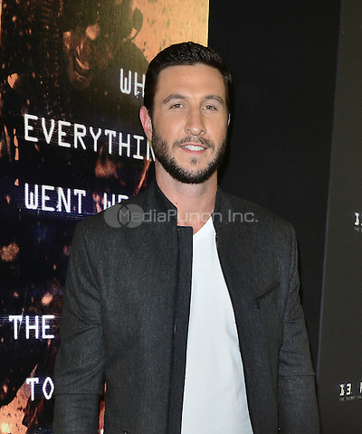 AVENTURA, FL - JANUARY 07: Pablo Schreiber attends the Screening of '13 Hours The Secret Soldiers of Benghazi' at the AMC Aventura on January 7, 2016 in Aventura, Florida.  Credit: MPI10 / MediaPunch