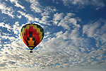 Hot air balloons sailed over Napa Valley filled in mustard fields with a background of winter clouds in California.