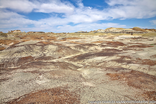 The Bisti-De Na Zin Recreation Area is referred to as a badlands because of the many unusual geologic formations and the multicolored earth that hikers and visitors can see there.