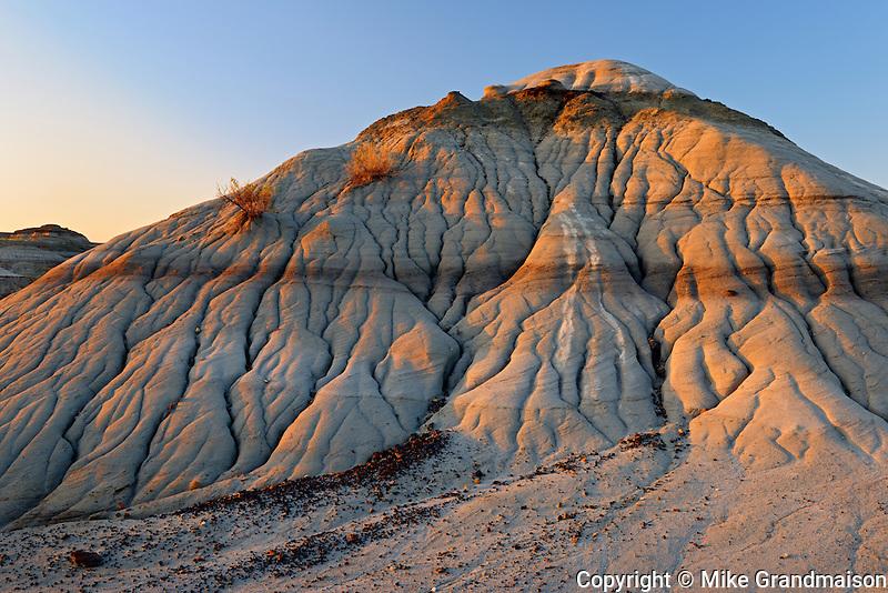Badland formations at sunrise<br /> Dinosaur Provincial Park<br /> Alberta<br /> Canada