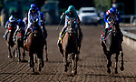 November 1, 2019: British Idiom, ridden by Javier Castellano, wins the Breeders' Cup Juvenile Fillies on Breeders' Cup World Championship Friday at Santa Anita Park on November 1, 2019: in Arcadia, California. Michael McInally/Eclipse Sportswire/CSM