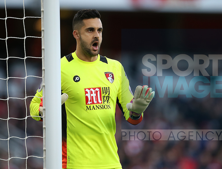 Bournemouth's Adam Federici in action during the Premier League match at the Emirates Stadium, London. Picture date October 26th, 2016 Pic David Klein/Sportimage