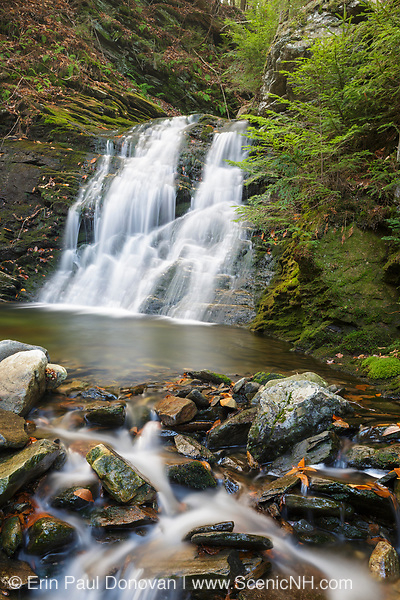 Blue Ravine Cascades on a tributary of the Wild Ammonoosuc River on the side of Mt. Blue in Kinsman Notch of the White Mountains, New Hampshire during the autumn months.