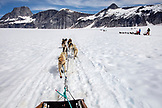 ALASKA, Juneau, the dog sled is pulled by mutiple sled dogs over the Juneau Ice Field, Helicopter Dogsled Tour flies you over the Taku Glacier to the HeliMush dog camp at Guardian Mountain above the Taku Glacier