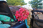 Water Lillies Draped Over Car Ready For Sale At Market