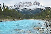 Cathedral Mountain, Yoho River, Yoho National Park