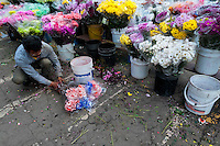 A Colombian man sells bunches of flowers in the flower market of Bogota, Colombia, 10 July 2010. Colombia is one of the world leaders in cut flower industry. The advantage of the moderate sunny climate, very cheap labor force in combination with the absence of social laws and environmental regulations have created perfect conditions for the cut flower production. Flower growing is very fragile and necessarily depends on irrigation and chemical maintenance, provided by highly toxic pesticides. About 110.000 workers in Colombia, working mainly for living minimum wage, keep the floral industry going and saturate the market generated by consumerist culture the US, Canada and Europe.