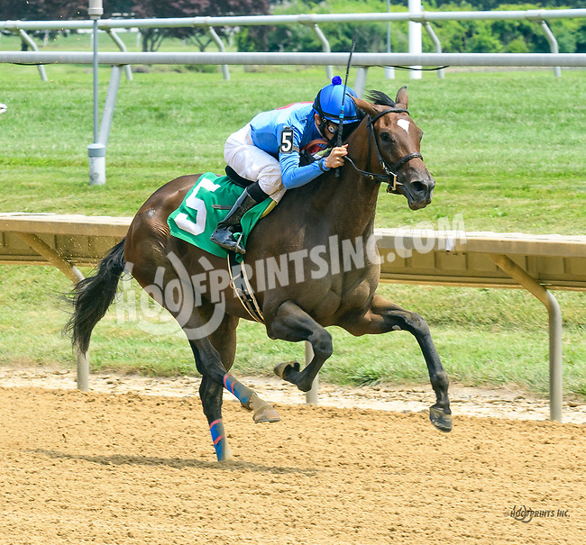 Blushing Bird winning at Delaware Park on 7/22/17