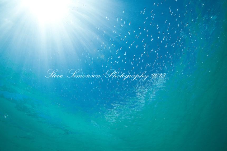 Clear water at Maho Bay.Virgin Islands National Park.St. John, U.S. Virgin Islands