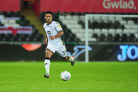 Wayne Routledge of Swansea City in action during the Sky Bet Championship match between Swansea City and Charlton Athletic at the Liberty Stadium in Swansea, Wales, UK.  Thursday 02 January 2020