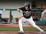 The Reno Aces' Evan Frey attempts a bunt against the Colorado Springs Sky Sox on Friday, July 15, 2011, in Reno, Nev. The Aces won 6-3..Photo by Cathleen Allison