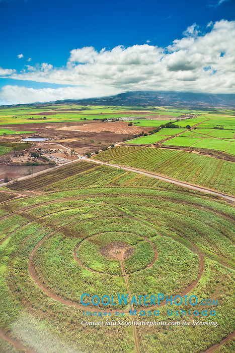 The Valley of Sugar - Maui's controversial 37,000 acre sugar cane fields with a circle irrigation system - set to burn when harvesting, creating enormous smoke, ash and dust, Maui, Hawaii, USA