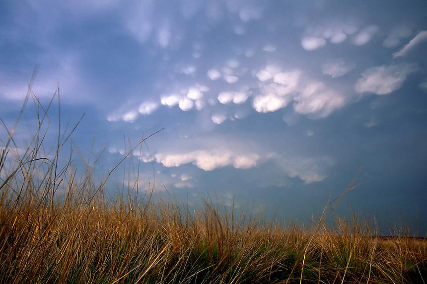 Mammatus clouds brood over native tallgrass prairie near Memphis Texas in May.